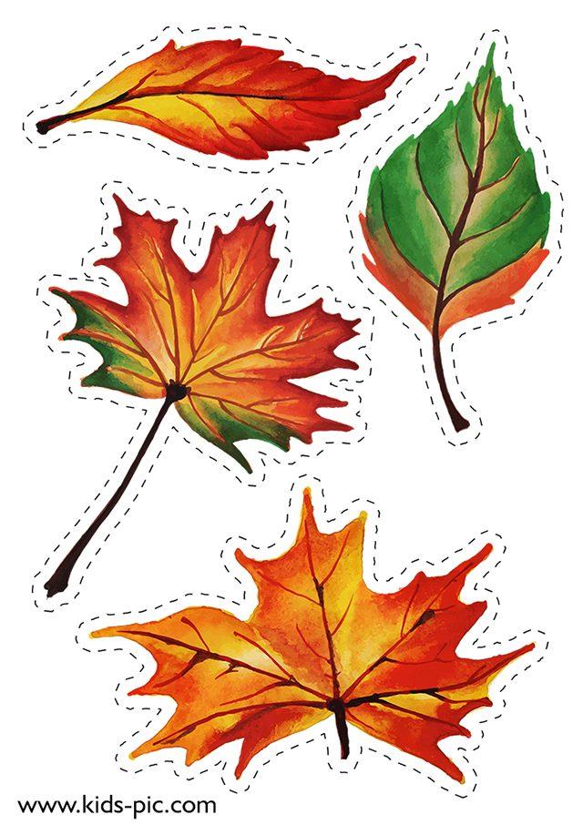 шаблони осіннього листя для вирізання з паперу A4