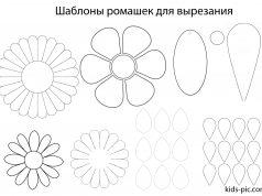 шаблон ромашки для вырезания из бумаги а4