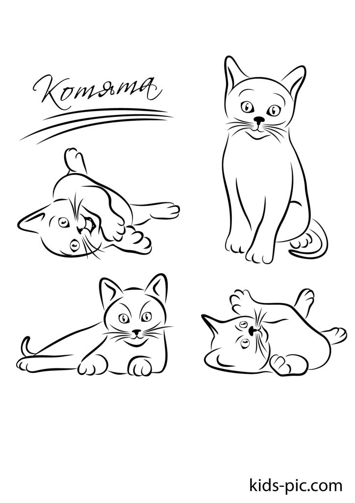 трафарет кішки для вирізання з паперу
