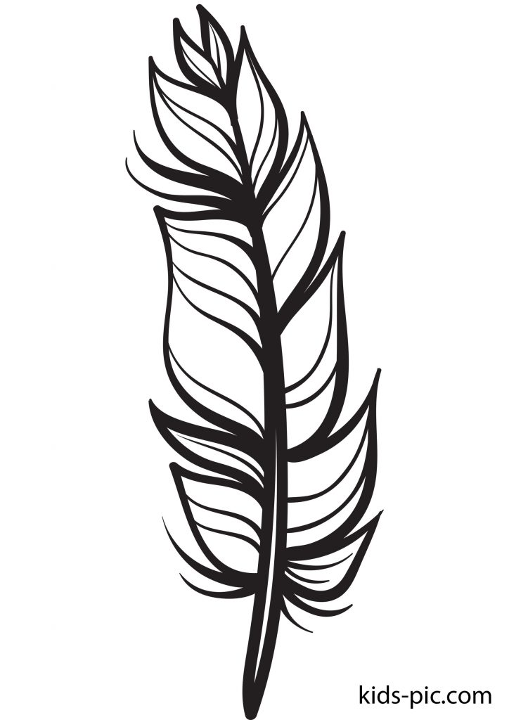 free printable feather coloring pages