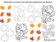 шаблоны осенних листьев для вырезания из бумаги распечатать
