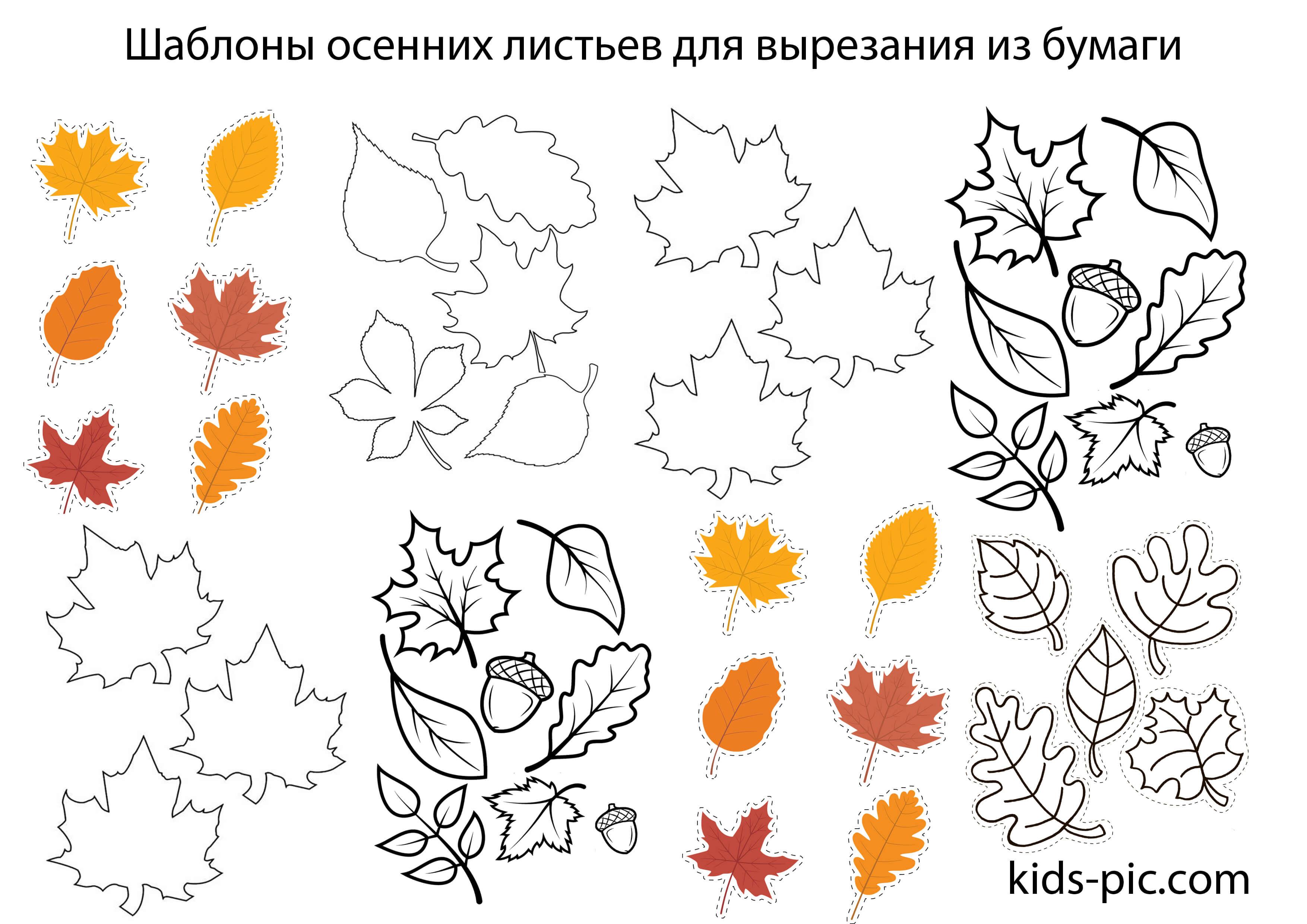 маленькие картинки про осень красивые для распечатки на листочках