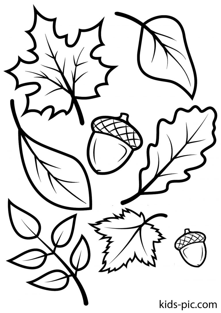 Картинке, листья осени картинки трафареты