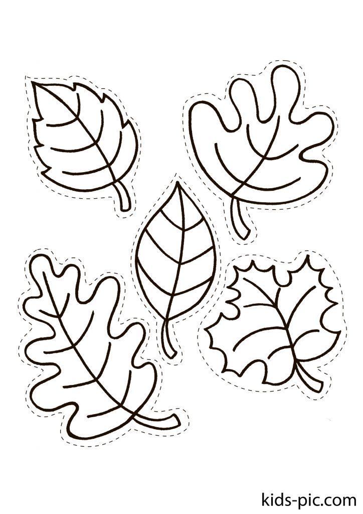 шаблонижовтого осіннього листя для вирізання з паперуроздрукуватиформат А4