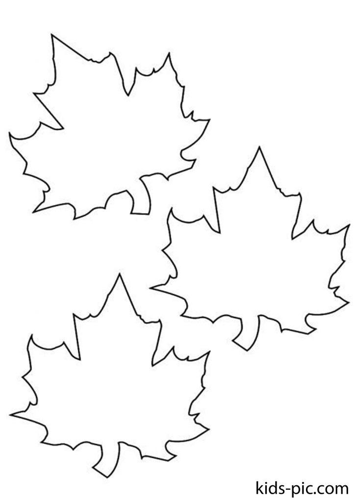 шаблони осіннього листя для вирізання з паперуроздрукуватиформат А4