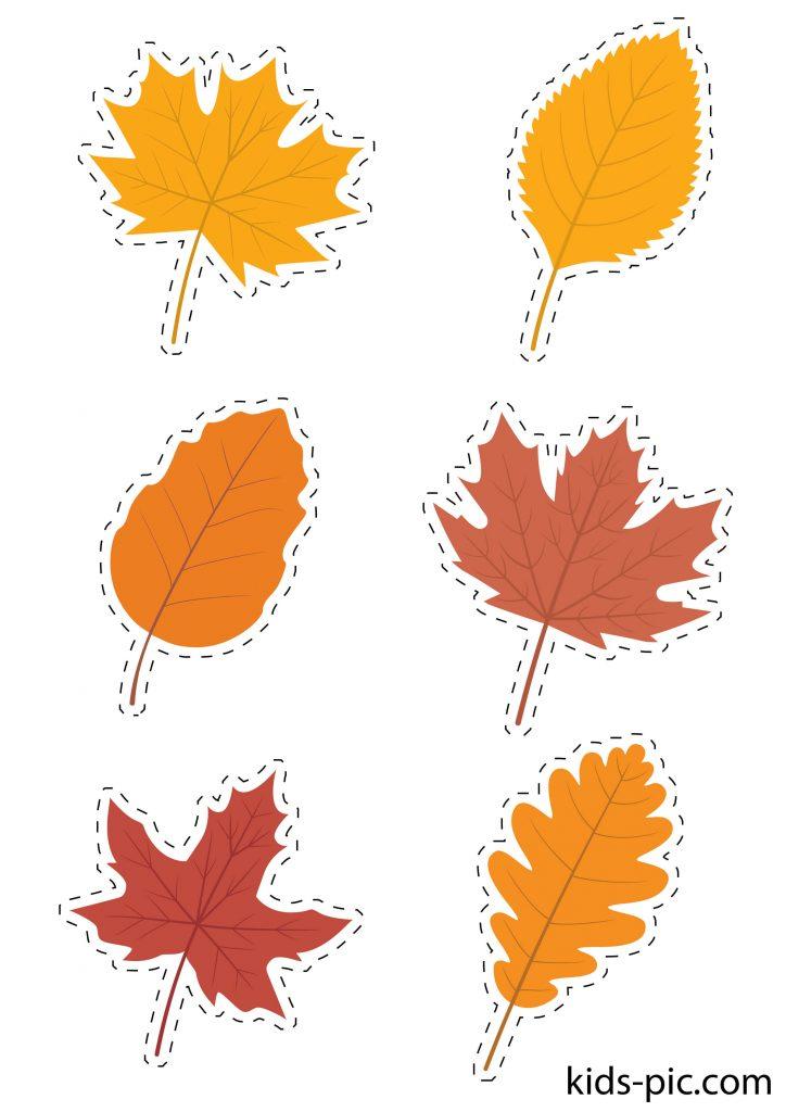 шаблони осіннього листя для вирізання з паперу завантажити тароздрукувати