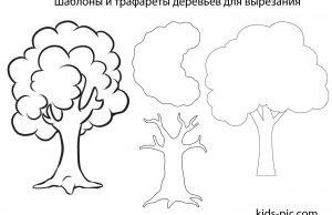 Шаблоны и трафареты деревьев для вырезания из бумаги
