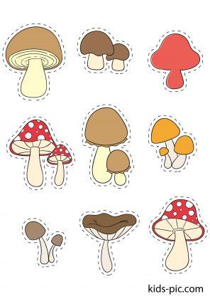 мире грибы фото для вырезания гостиные