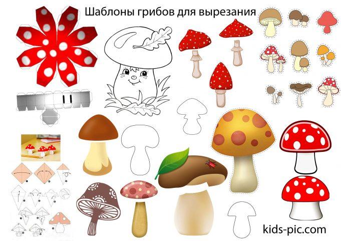 шаблоны грибы для вырезания из бумаги