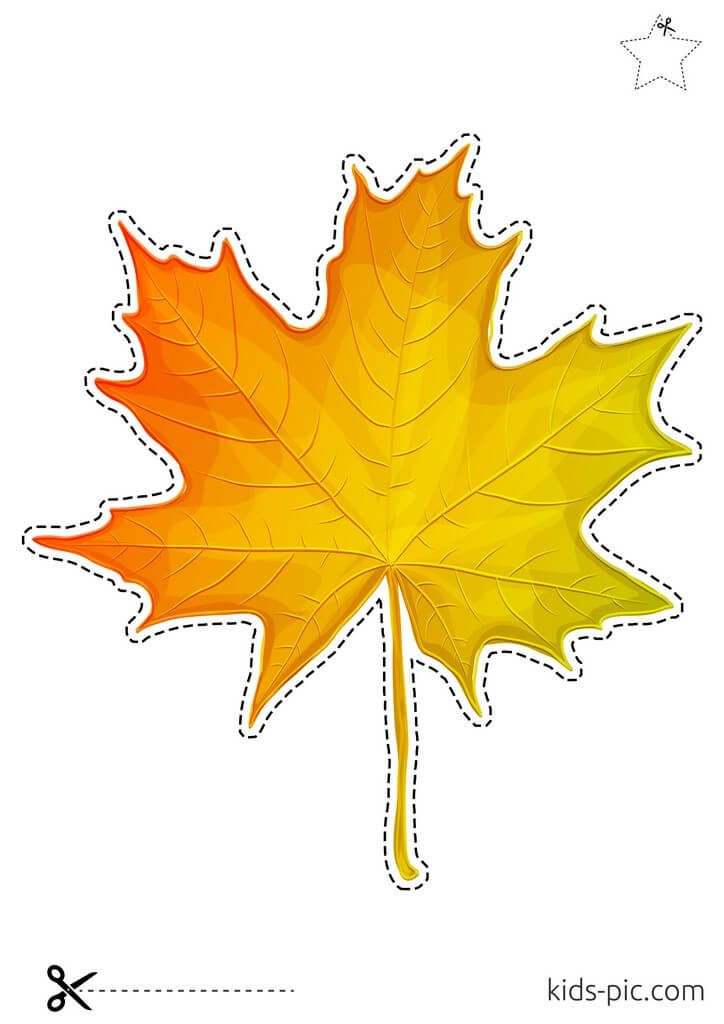 maple leaf template to print