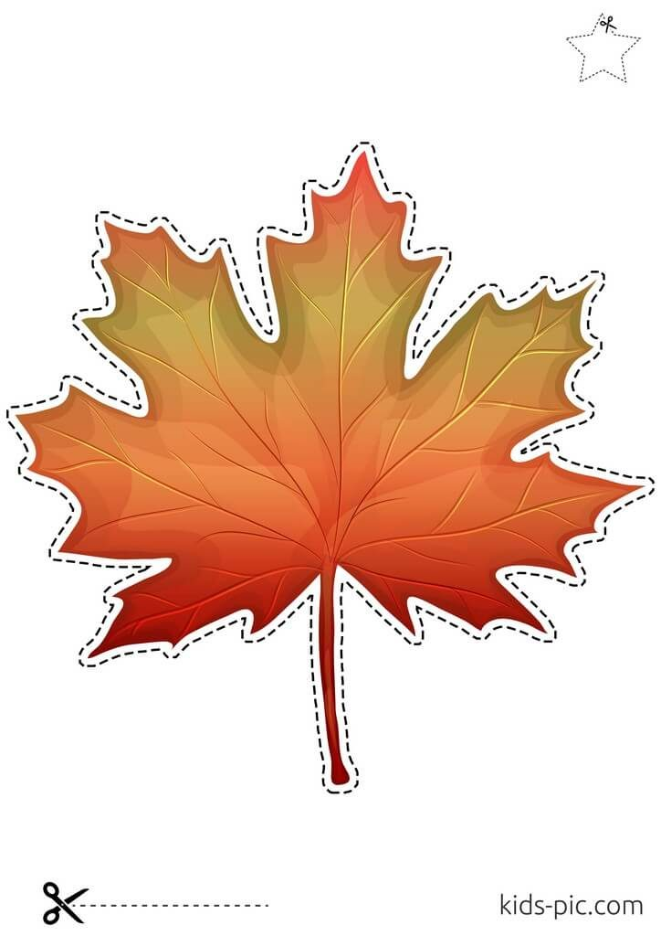 canadian maple leaf stencil