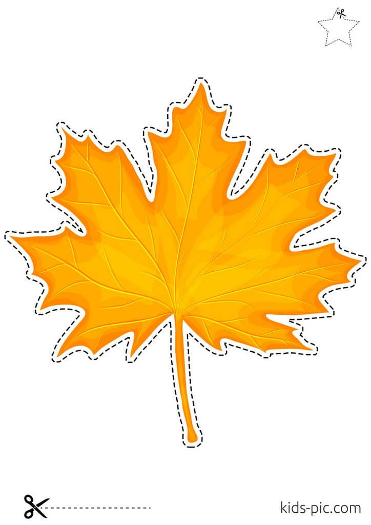 maple leaf pattern free printable