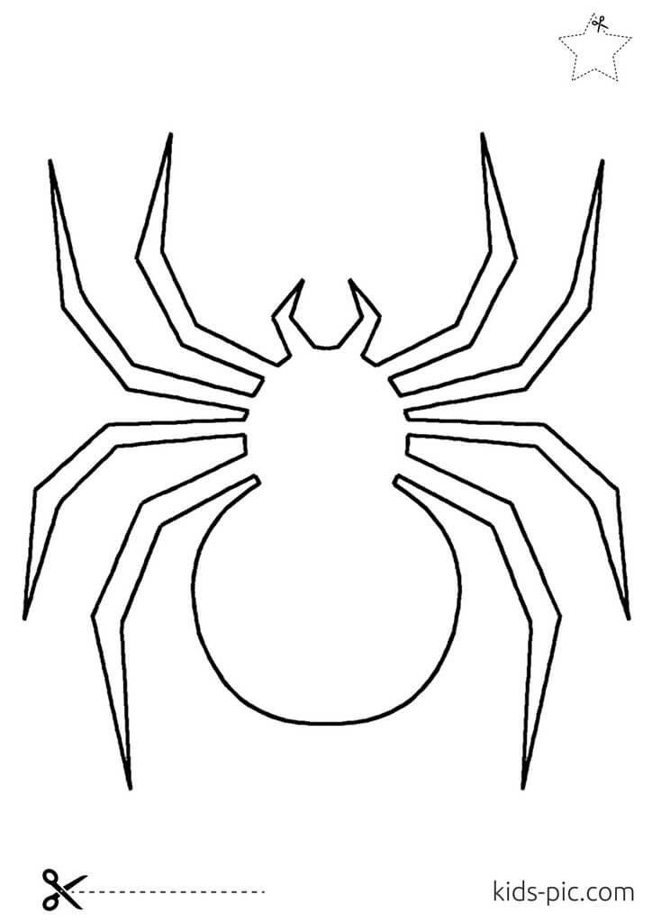як зробити павука своїми руками до Гелловіну