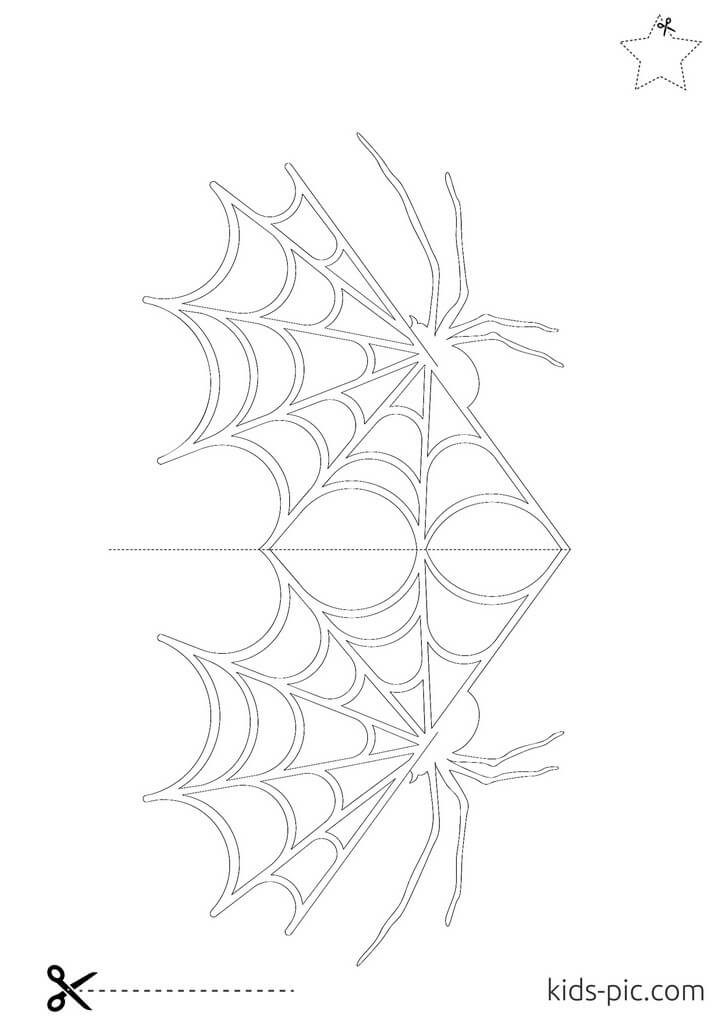 cut spider web out paper
