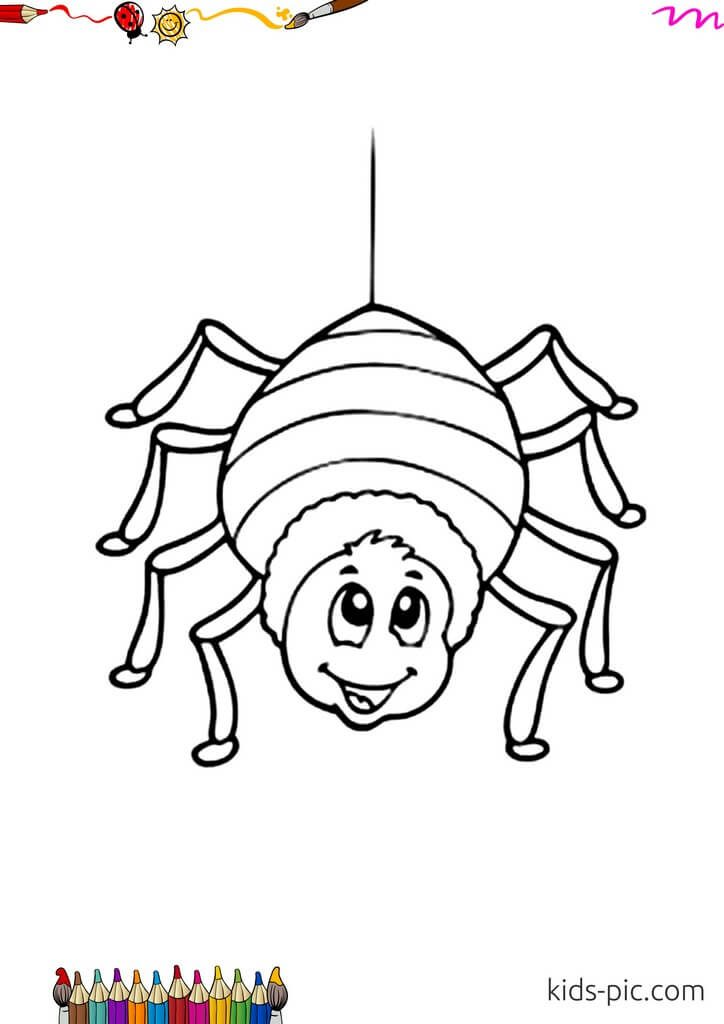 coloring page of spider web