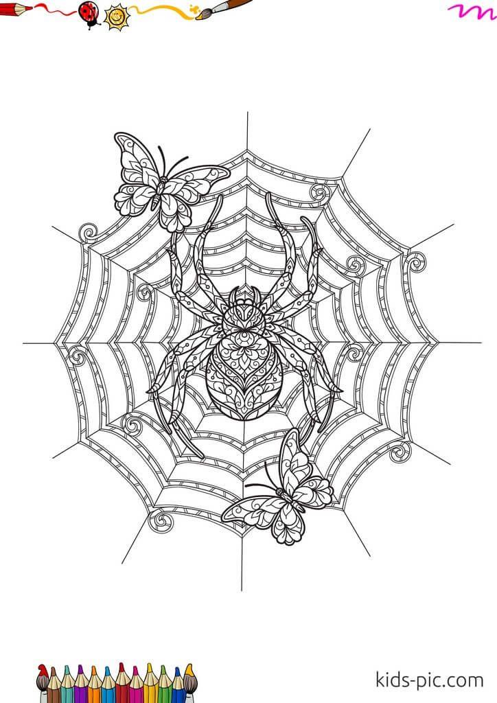 paper spider web craft