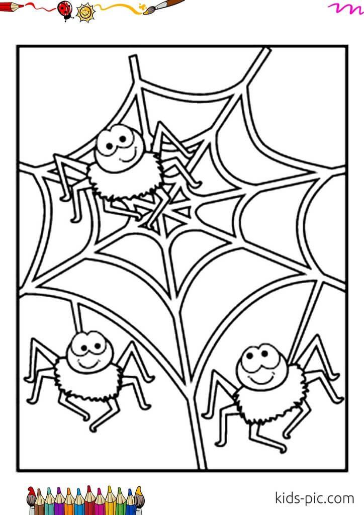 halloween spider web